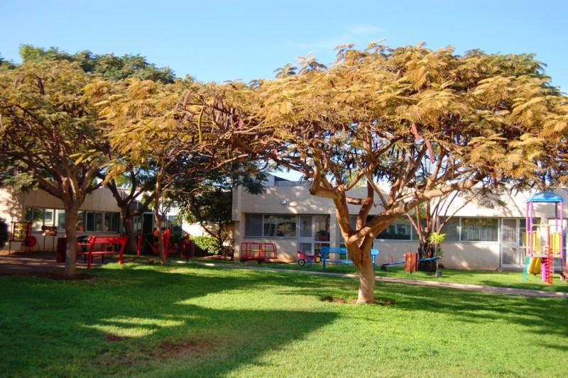 בית הלפרין חצר