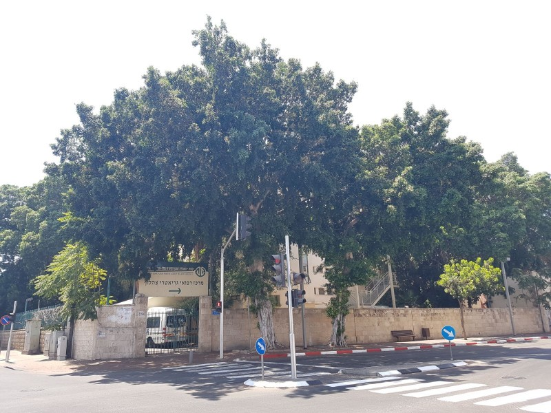 בית אבות צהלון ירושלים כניסה